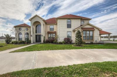 Fort Bend County Single Family Home For Sale: 6718 Cartwright Court