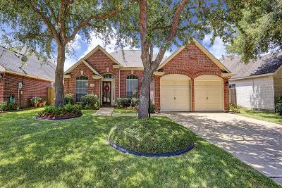 Houston Single Family Home For Sale: 3814 Shady Breeze Drive
