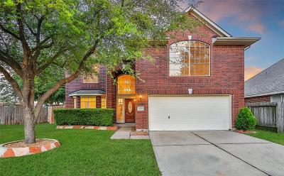 Houston Single Family Home For Sale: 8750 Willancy Lane