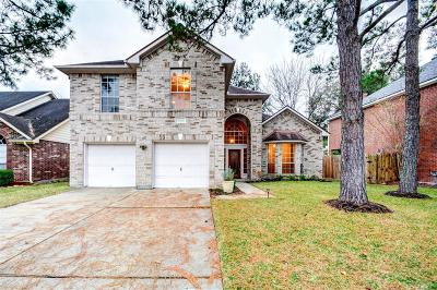 Houston Single Family Home For Sale: 5703 Parryville Drive
