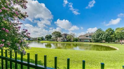 Houston Single Family Home For Sale: 11931 Waterdance Lane