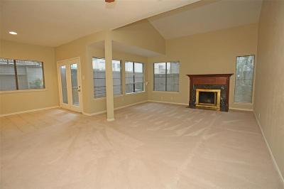 Houston Condo/Townhouse For Sale: 1619 Prairie Mark Lane
