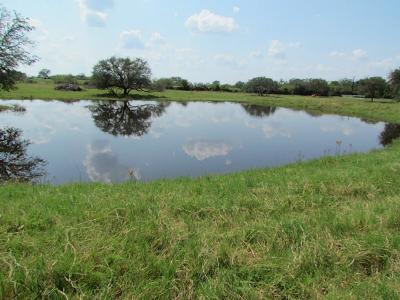 Farm & Ranch For Sale: County Road 380
