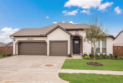 Katy Single Family Home For Sale: 6919 Red Oak
