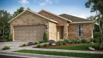 Richmond TX Single Family Home For Sale: $255,061