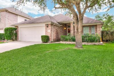 Spring Single Family Home For Sale: 3243 Enchanted Hollow Lane