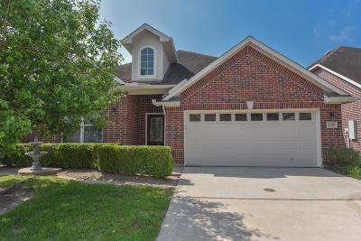 Conroe Single Family Home For Sale: 15219 W Scenic Forest