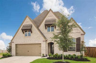 Katy Single Family Home For Sale: 2646 Cotton Lane