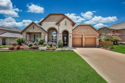 Spring Single Family Home For Sale: 7655 Ikes Tree Drive