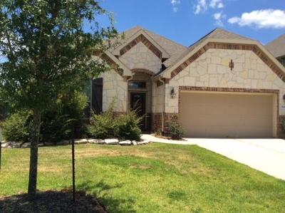 Porter Single Family Home For Sale: 21419 Russell Chase Drive