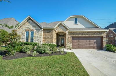 Humble Single Family Home For Sale: 9323 S Mystic Falls Lane