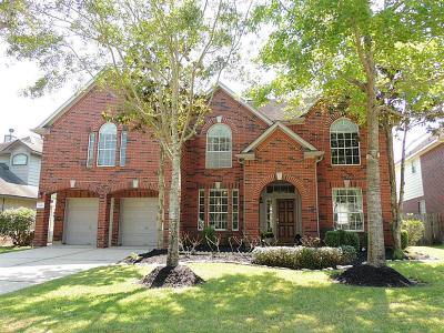 Sugar Land Single Family Home For Sale: 1403 Tahoe Valley Lane