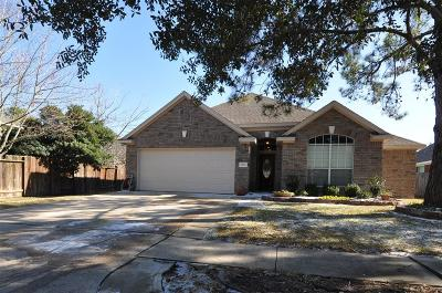 Tomball Single Family Home For Sale: 11611 Mesa Wells Drive