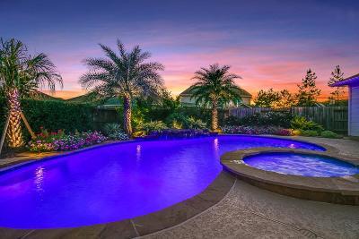 Katy Single Family Home For Sale: 1510 Lake Grayson Drive
