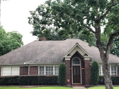 Houston Single Family Home For Sale: 4303 Moonlight Shadow Court