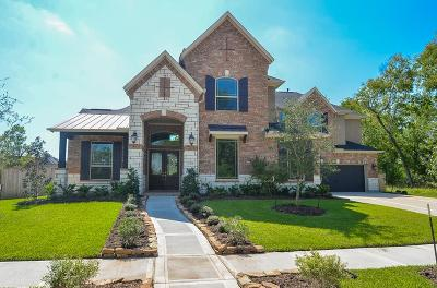Missouri City Single Family Home For Sale: 2103 Grand Place Drive