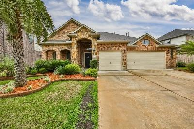 Richmond Single Family Home For Sale: 9011 Clearwater Ranch Lane