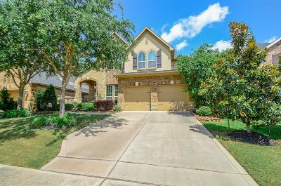 Katy Single Family Home For Sale: 4802 Ashley Hope Drive
