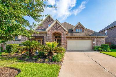 Fort Bend County Single Family Home For Sale: 17403 Meadow Light Drive