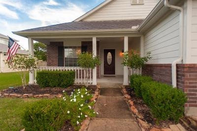 Pearland Single Family Home For Sale: 3206 Wheatfield Boulevard