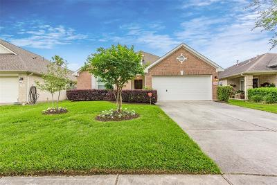 League City Single Family Home For Sale: 874 Schooner Cove Lane