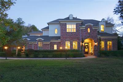 Spring Single Family Home For Sale: 3806 W Benders Landing Boulevard