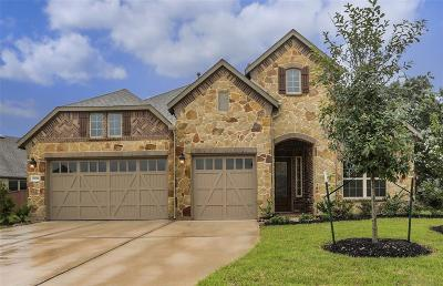 Katy Single Family Home For Sale: 25103 Dunbrook Springs Lane