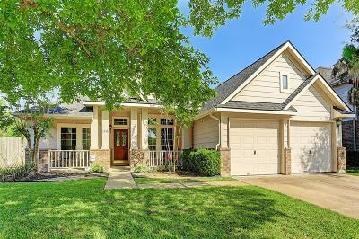 Sugar Land Single Family Home For Sale: 1338 Leigh Gardens Drive