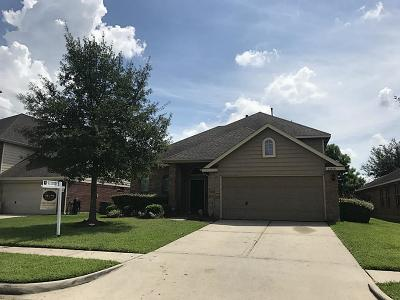 Deer Park Single Family Home For Sale: 2210 Neches Drive