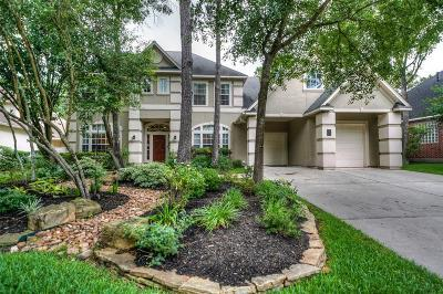 The Woodlands Single Family Home For Sale: 14 Cypress Lake Place
