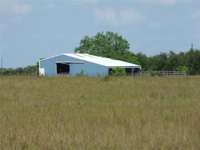 Austin County Farm & Ranch For Sale: 7001 Rexville Road