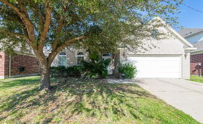Houston Single Family Home For Sale: 18622 Flagstone Creek Road