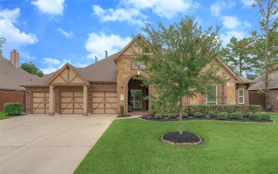 Spring Single Family Home For Sale: 19414 Sanctuary Place Drive
