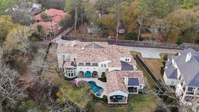 Houston Single Family Home For Sale: 22 E Shady Lane #D