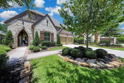 Tomball Single Family Home For Sale: 97 Sundown Ridge Place
