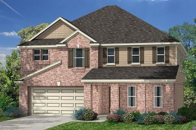 Pearland Single Family Home For Sale: 14205 Spring Birch Lane