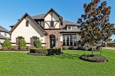 Friendswood Single Family Home For Sale: 1701 Hunters Cove