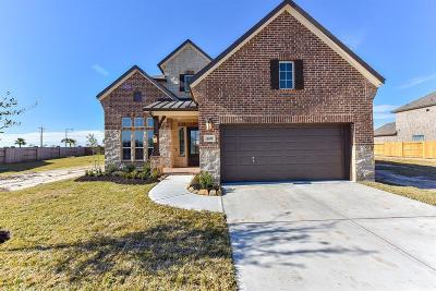 Texas City Single Family Home For Sale: 3021 Broadhaven Drive