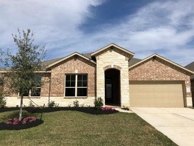 Katy Single Family Home For Sale: 23534 Mantova River Drive