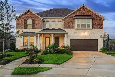 Pearland Single Family Home For Sale: 2213 Rocky Shores Lane