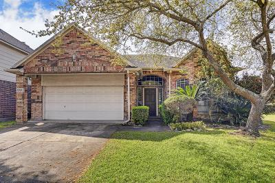 Houston Single Family Home For Sale: 13519 Andrew Way