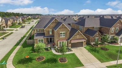 Cypress Single Family Home For Sale: 14903 Dogwood View Lane
