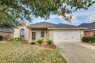 Katy Single Family Home For Sale: 28238 Daystrom Lane