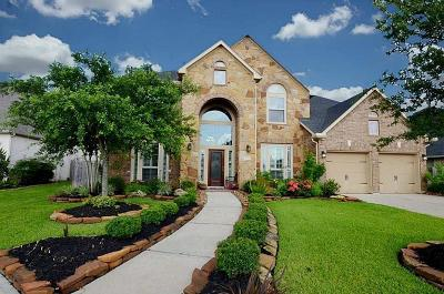 Sugar Land Single Family Home For Sale: 5610 Plum Point Court