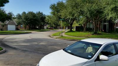 Houston Single Family Home For Sale: 11219 Timbertree Lane