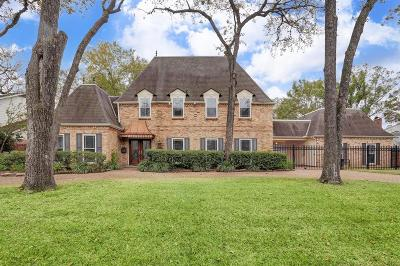 Houston Single Family Home For Sale: 620 Stoneleigh Drive Drive