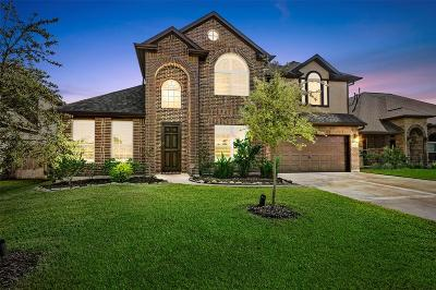 Tomball Single Family Home For Sale: 10715 Silver Shield Way