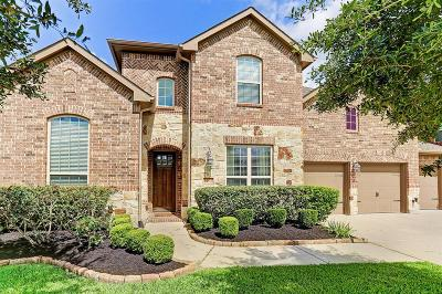 Manvel Single Family Home For Sale: 4114 Sage Brush Court