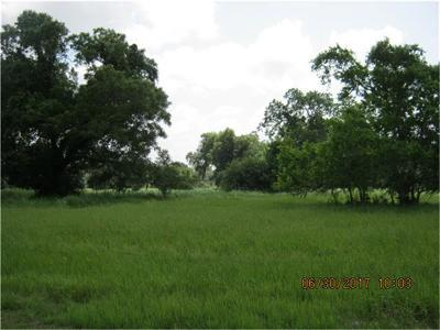 Angleton TX Residential Lots & Land For Sale: $20,000