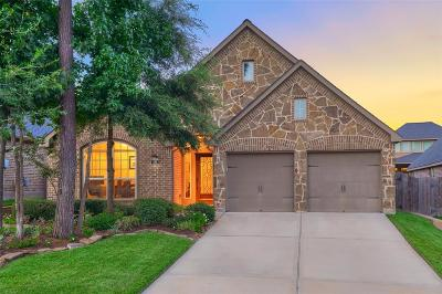 Montgomery Single Family Home For Sale: 106 Colina Vista Way